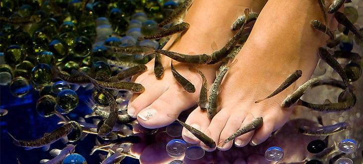 Balıklı kaplıca nedir?